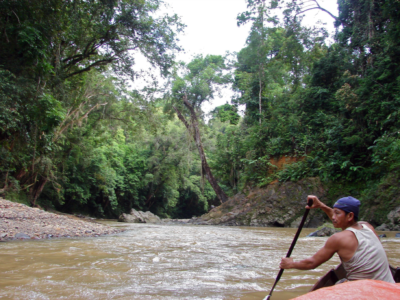 Man canoe river forest.jpg