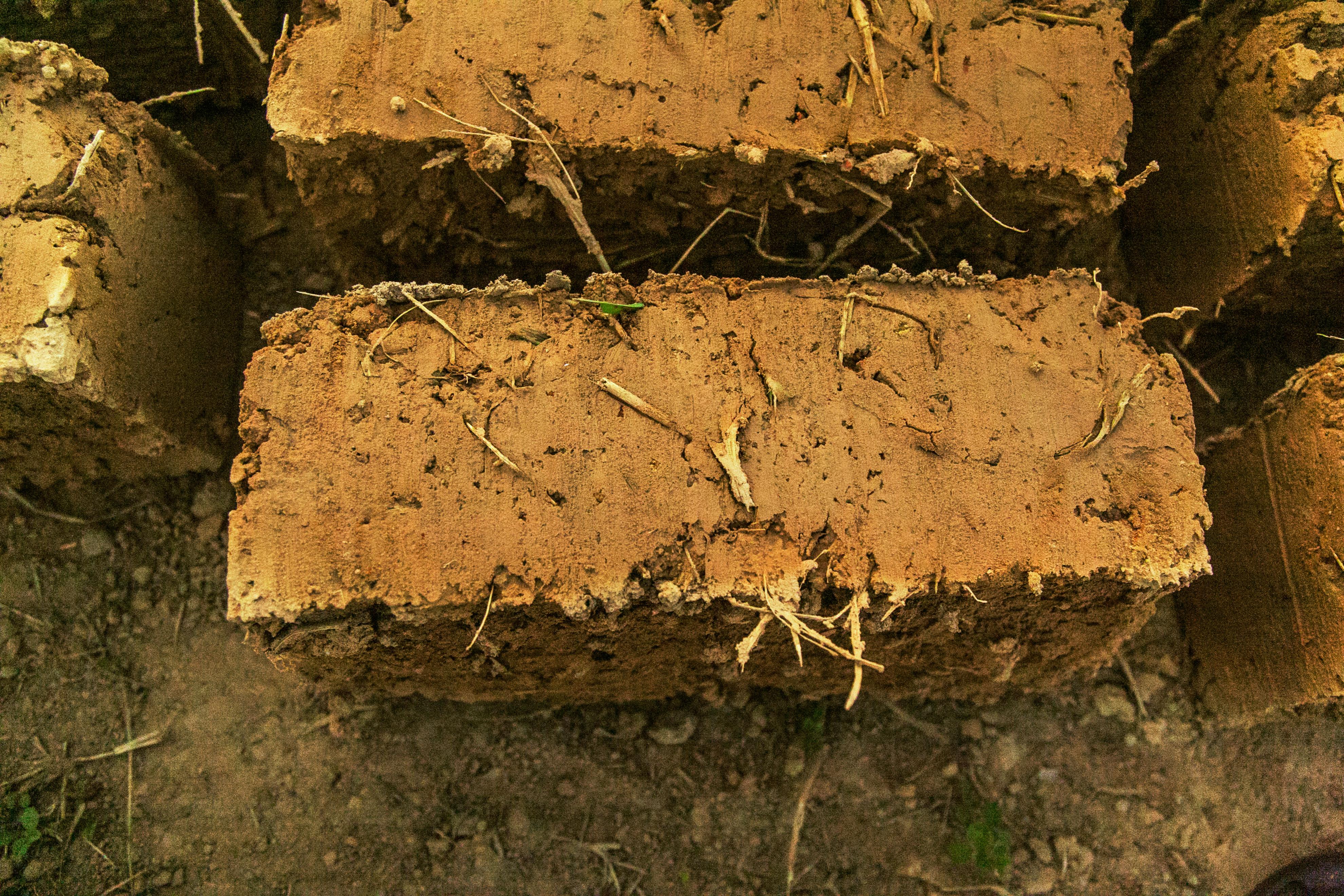 Brick_Earth_Roof_in_the_Sahel_Program.jpg
