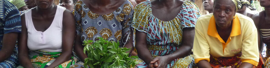 ECOWAS women and energy