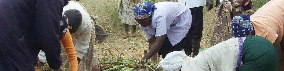 Developing a Climate-Smart Agriculture Manual for Agriculture