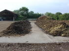 Compost_Guinea