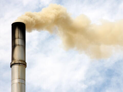 carbon taxation